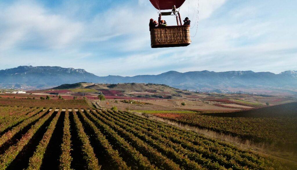 Vistas viñedos de La Rioja en globo